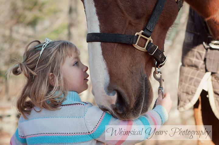 little girl looking at a big horse closeup