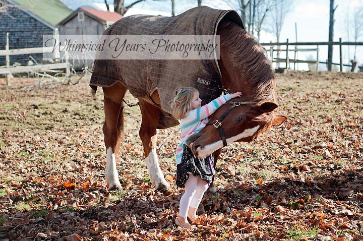 little girl hugging big horse