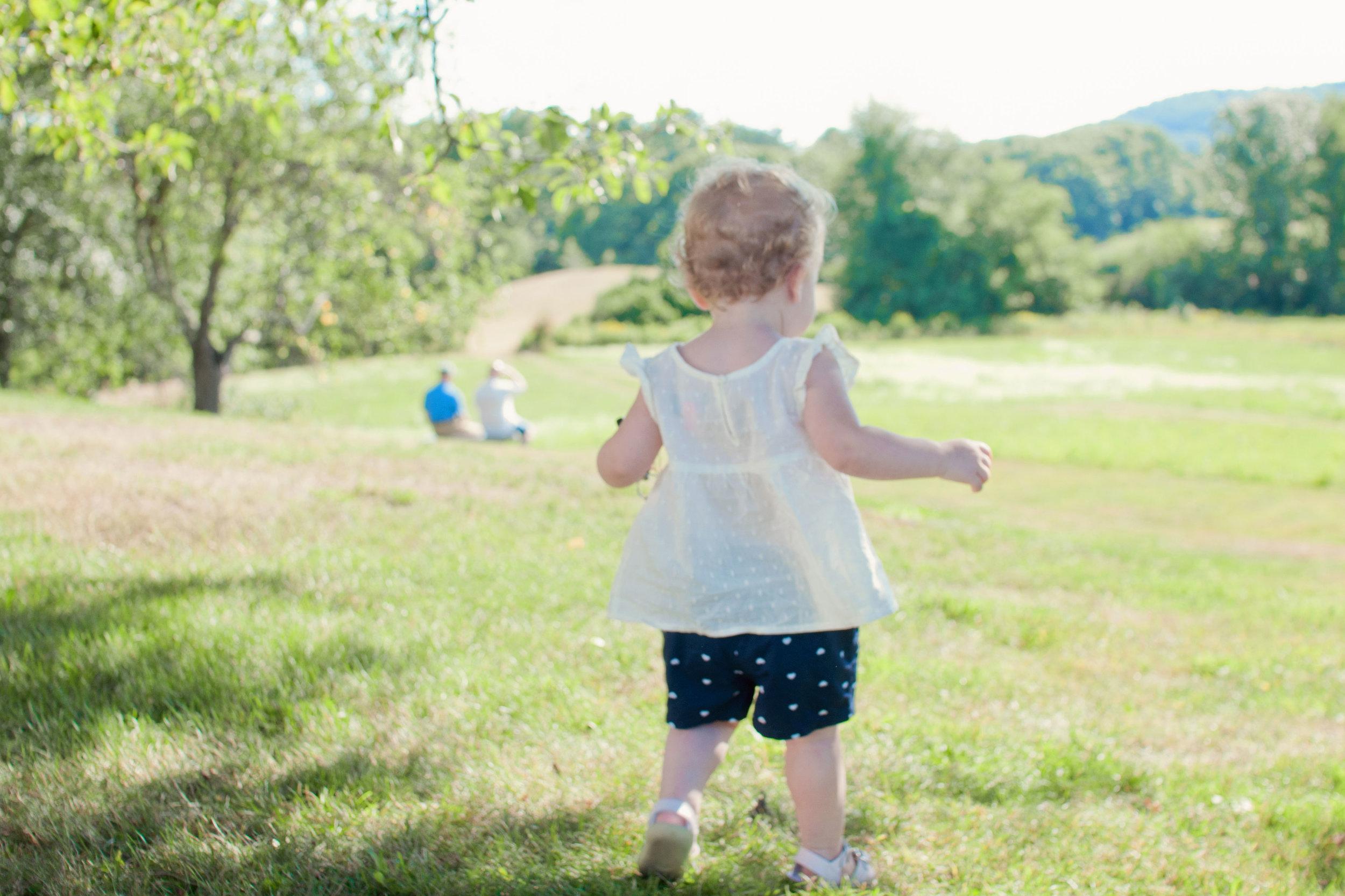 little toddler girl walking in a field