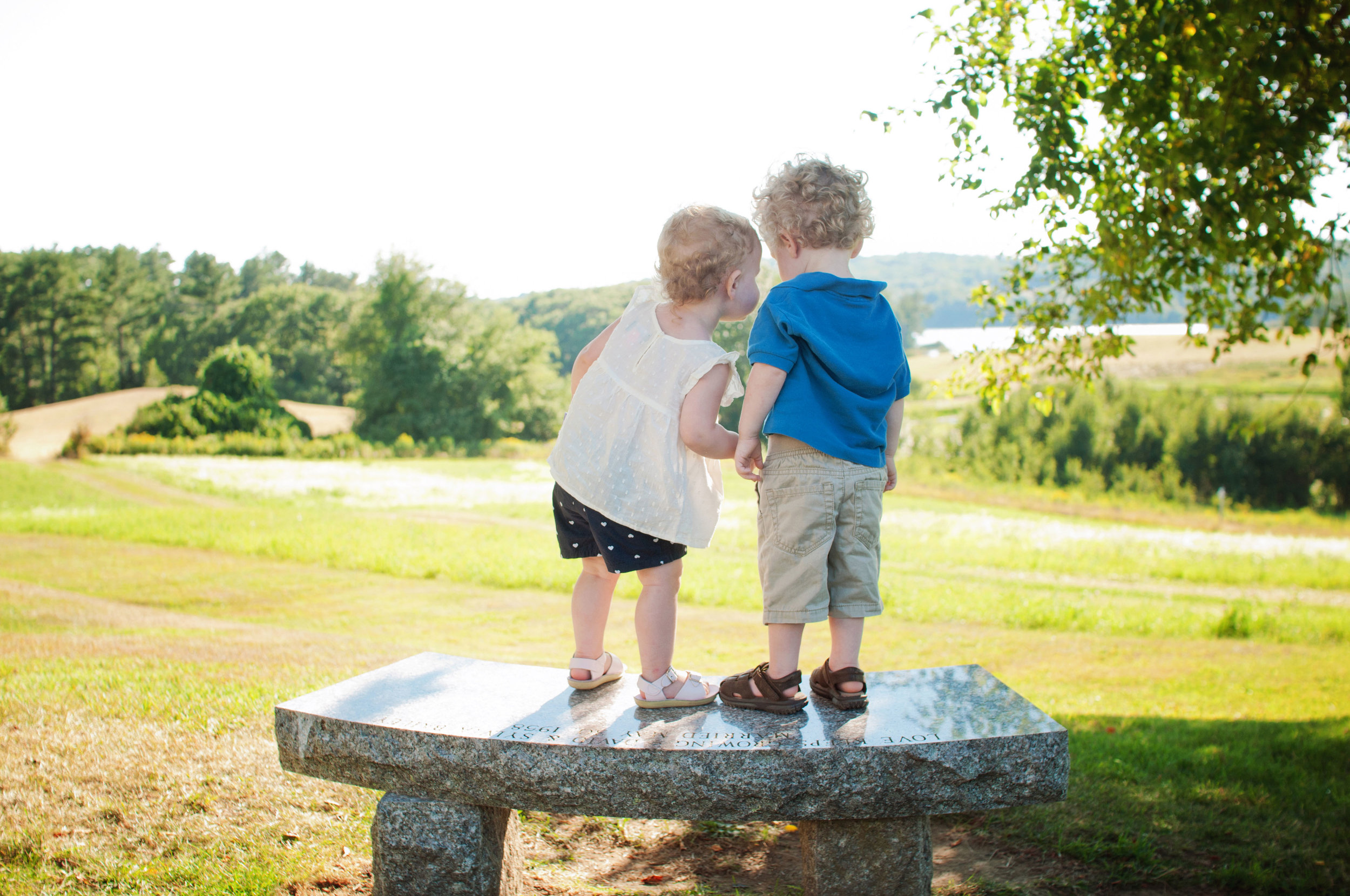 two toddlers standing on a bench together overlooking a meadow
