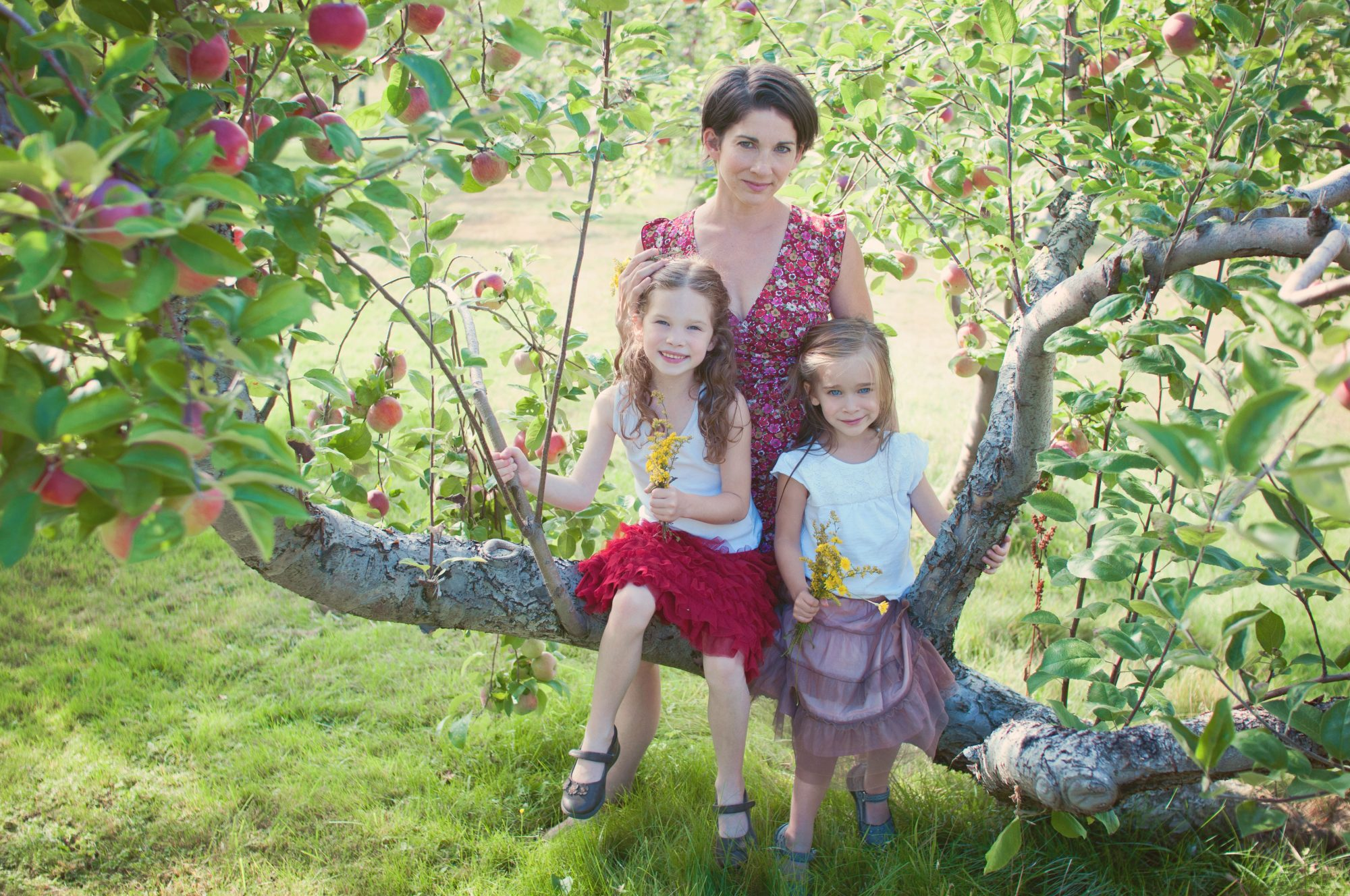 Mother with two daughters in apple tree at Clark's Cove Farm
