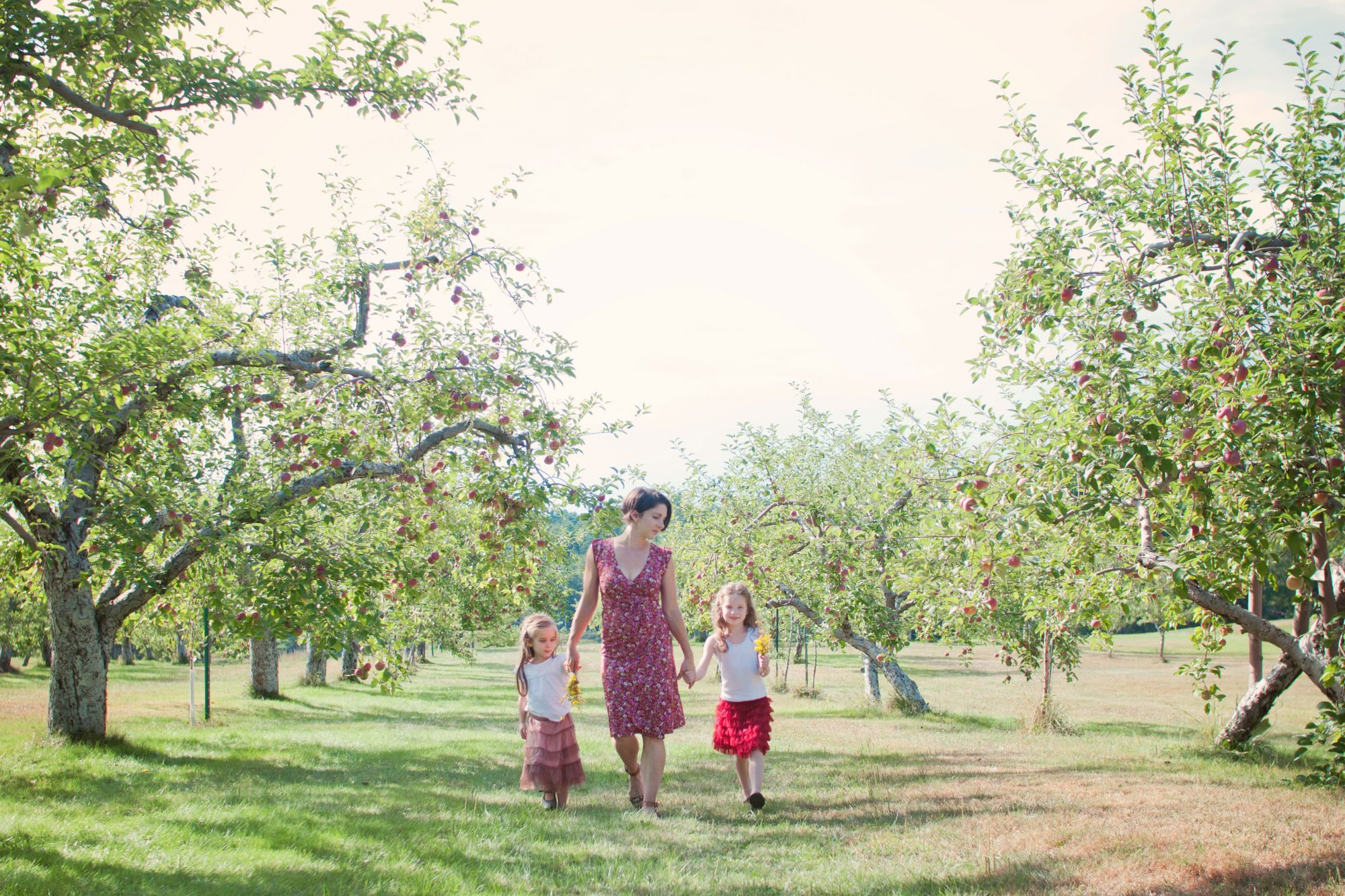 Mother and two daughters walking together in apple orchard at Clark's Cove Farm, Maine