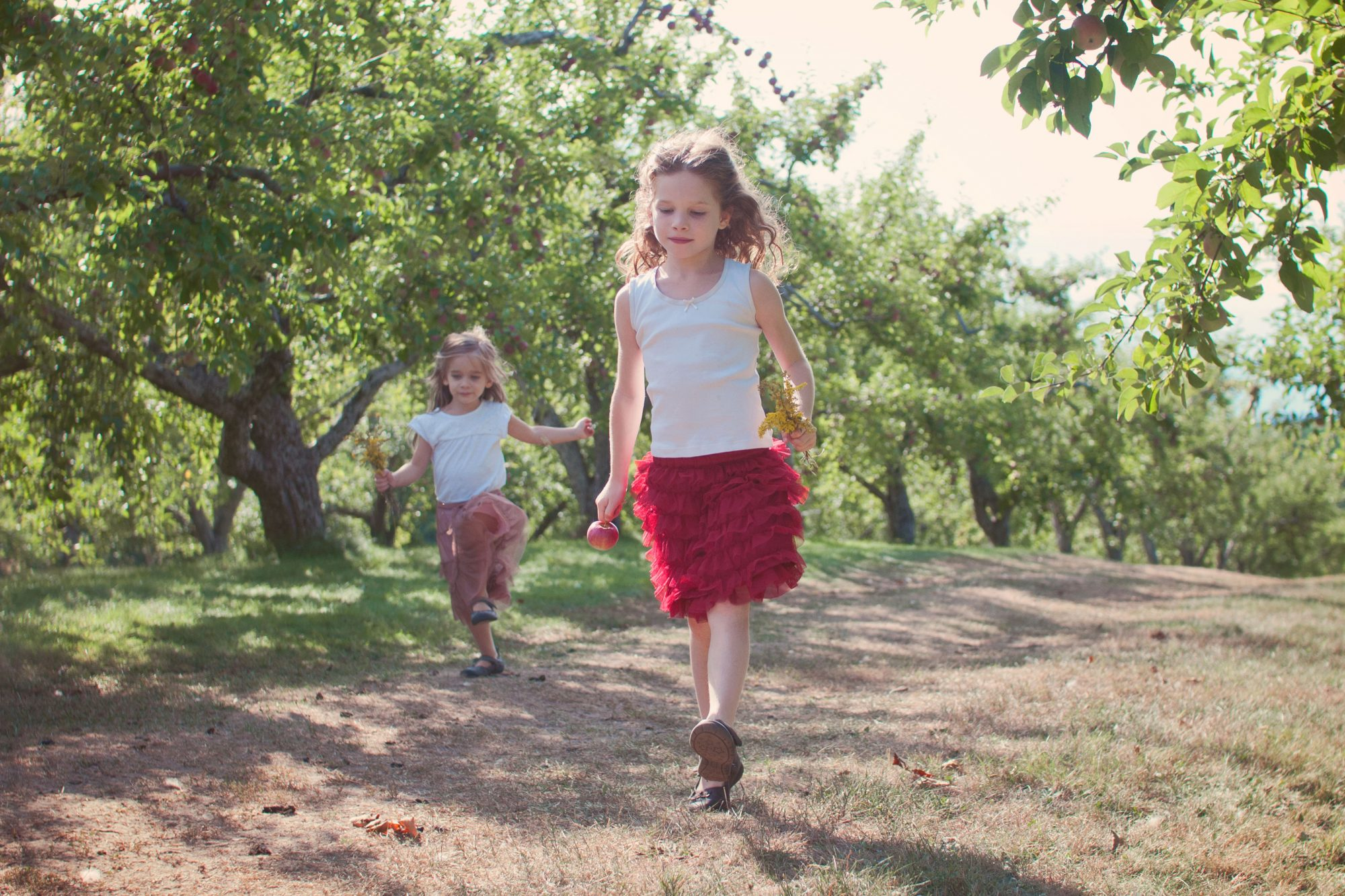 Sisters skipping through the apple orchard at Clark's Cove Farm
