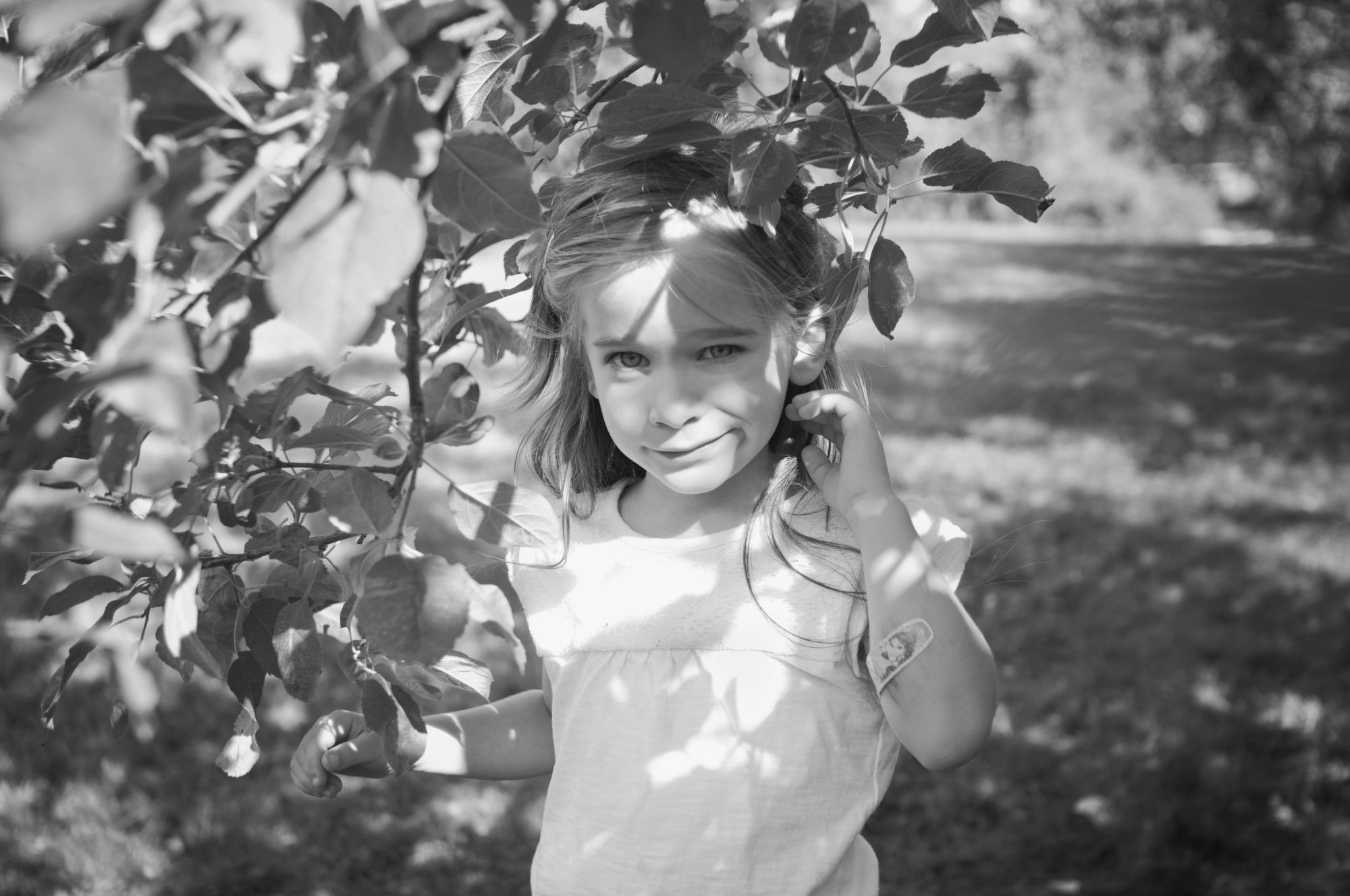Black and white portrait of young girl at apple orchard