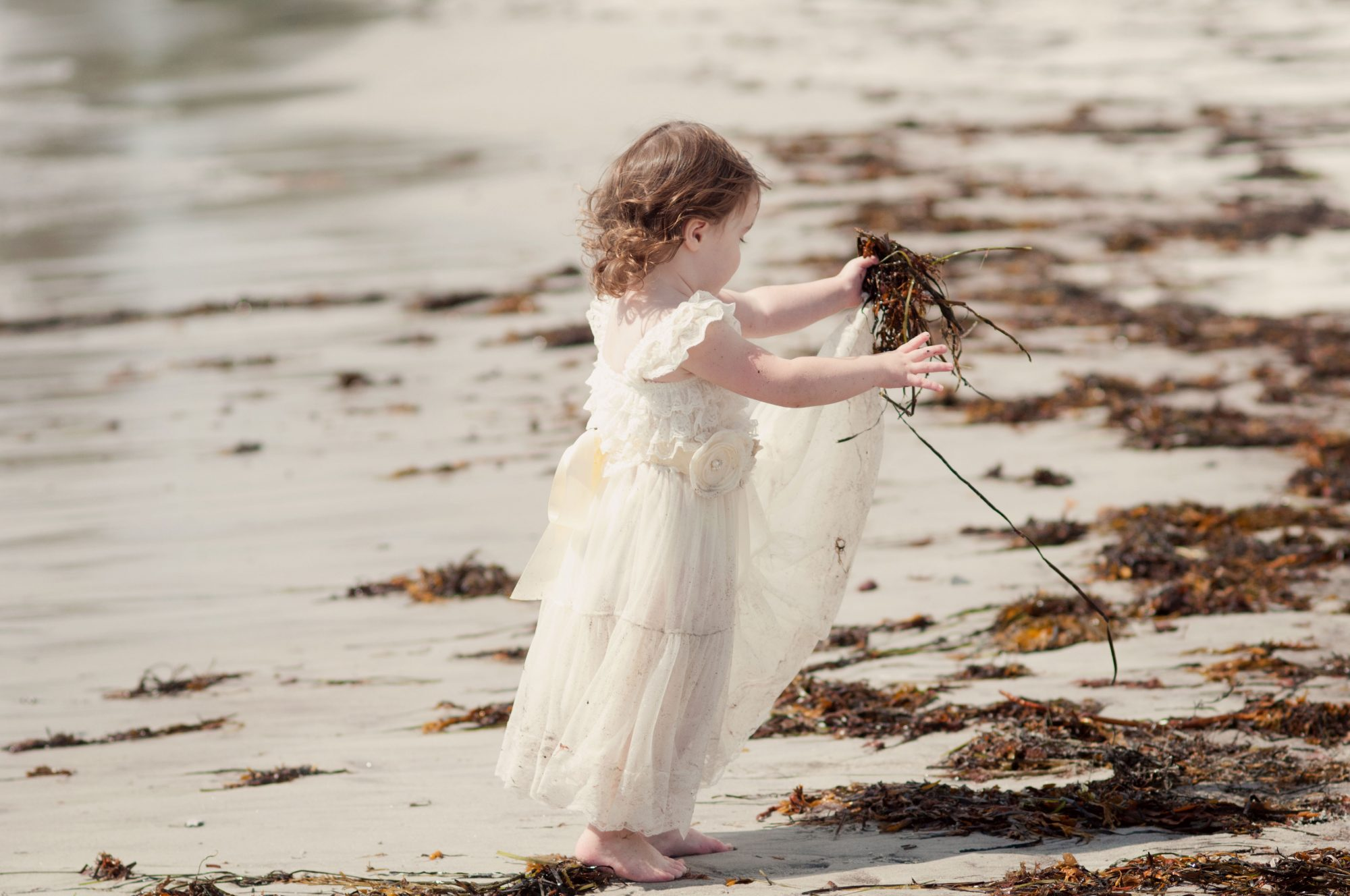 Little girl playing with seaweed at Pemquid Beach