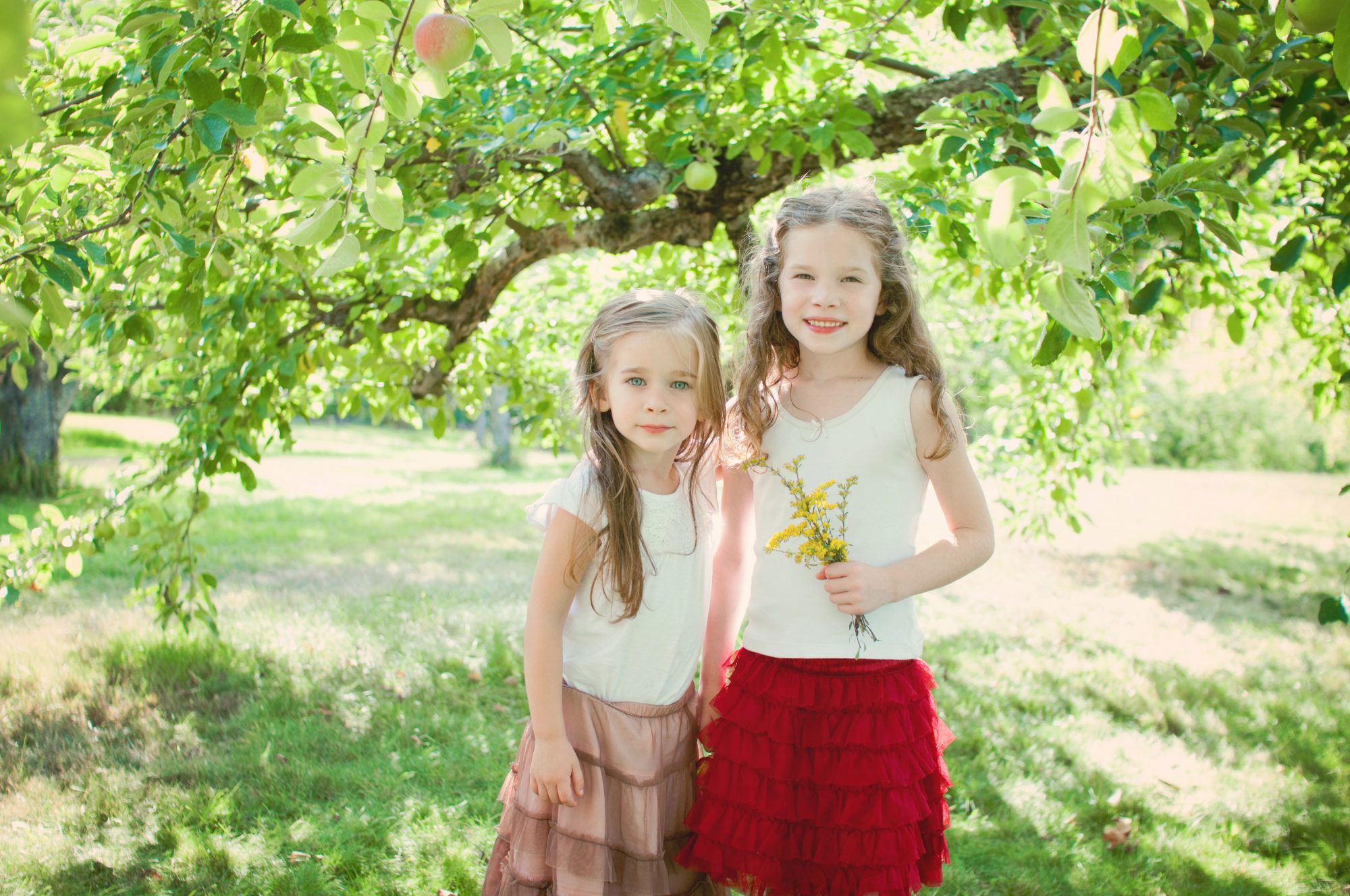 Portrait of two sister beneath an apple tree at Clark's Cove Farm
