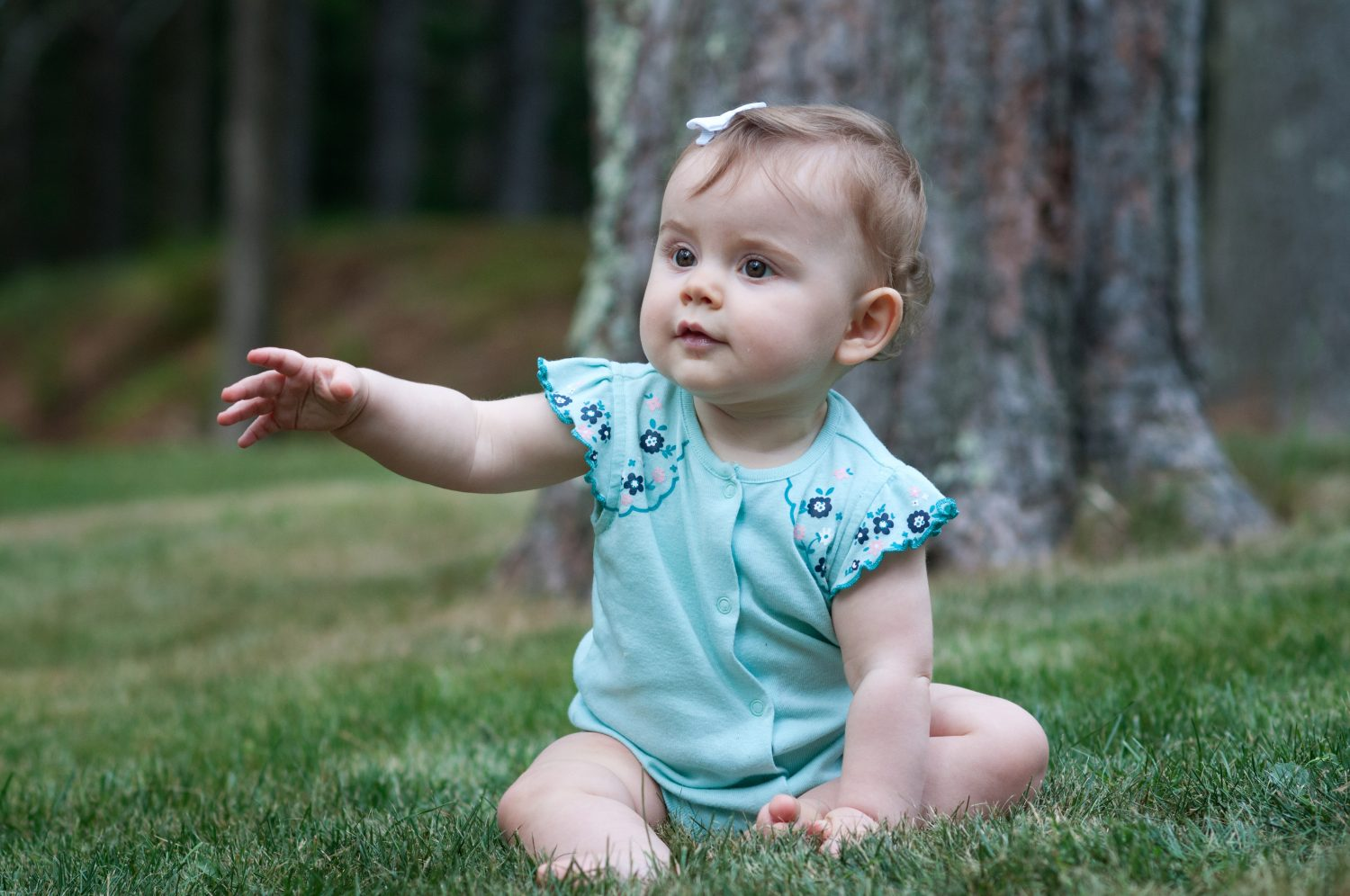portrait of baby girl sitting in the grass