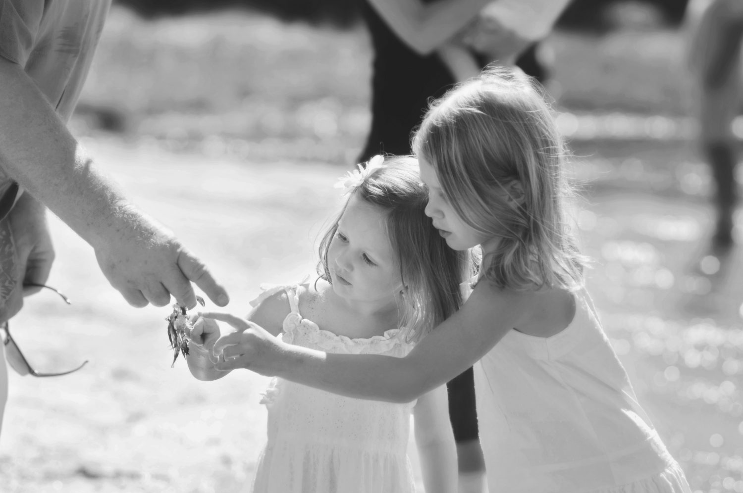 black and white photograph of two little girls looking at a small crab