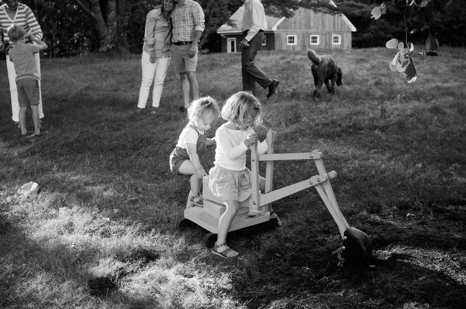 family playing together in a field