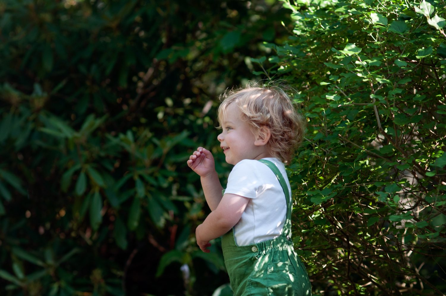 toddler boy in green overall shorts smiling in the woods