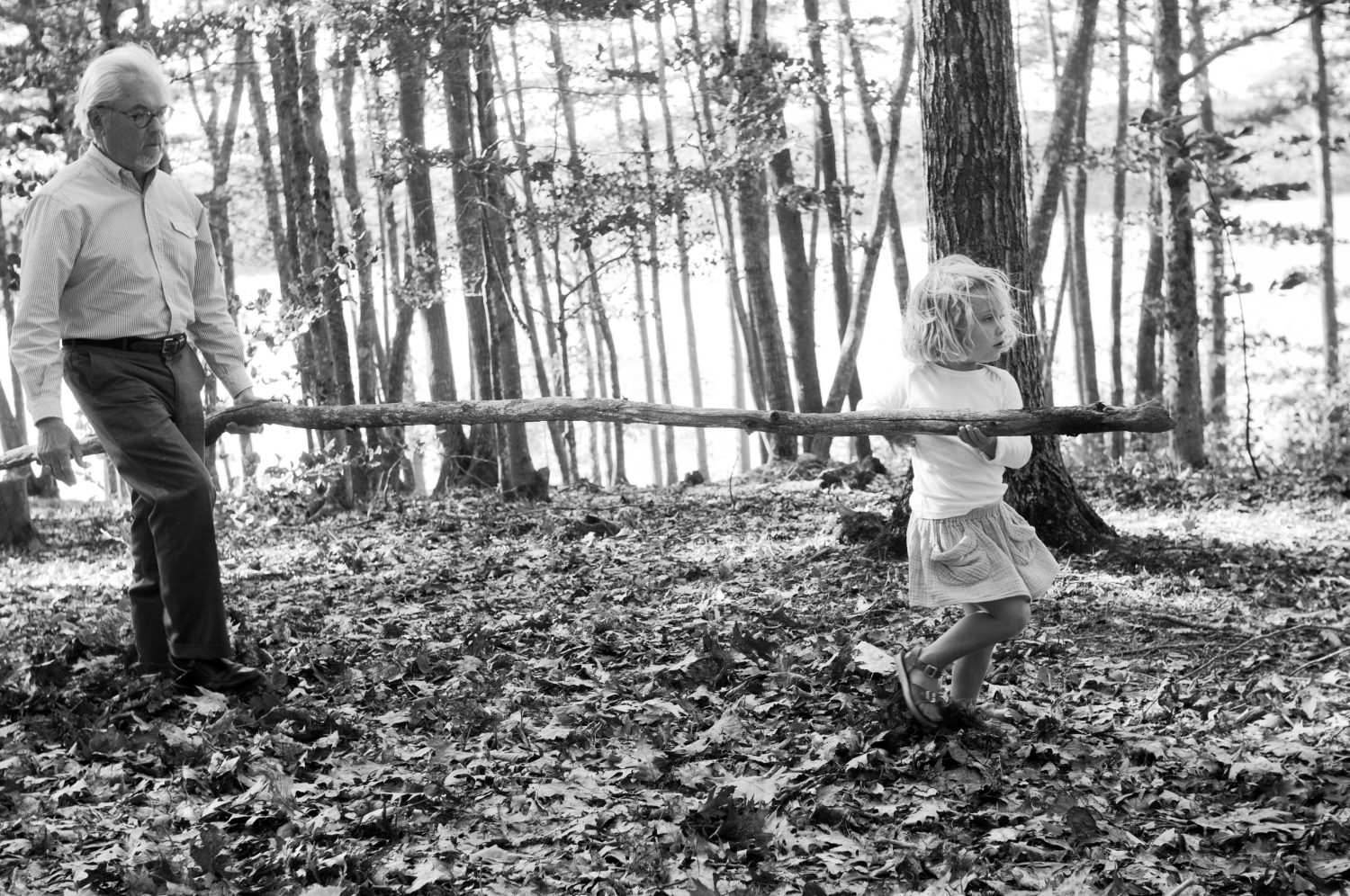 grandfather and granddaughter carrying a small log through the forest