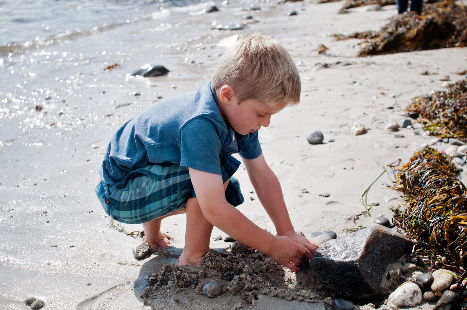 little boy digging in the sand at the shore