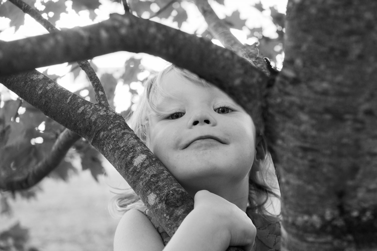 candid black and white photo of little girl in a tree