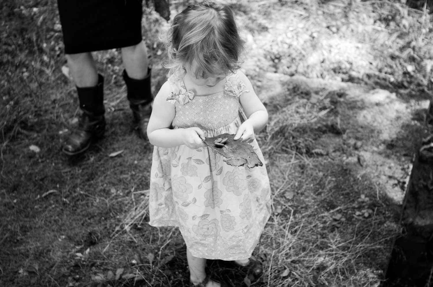 little girl holding a piece of bark with acrons atop