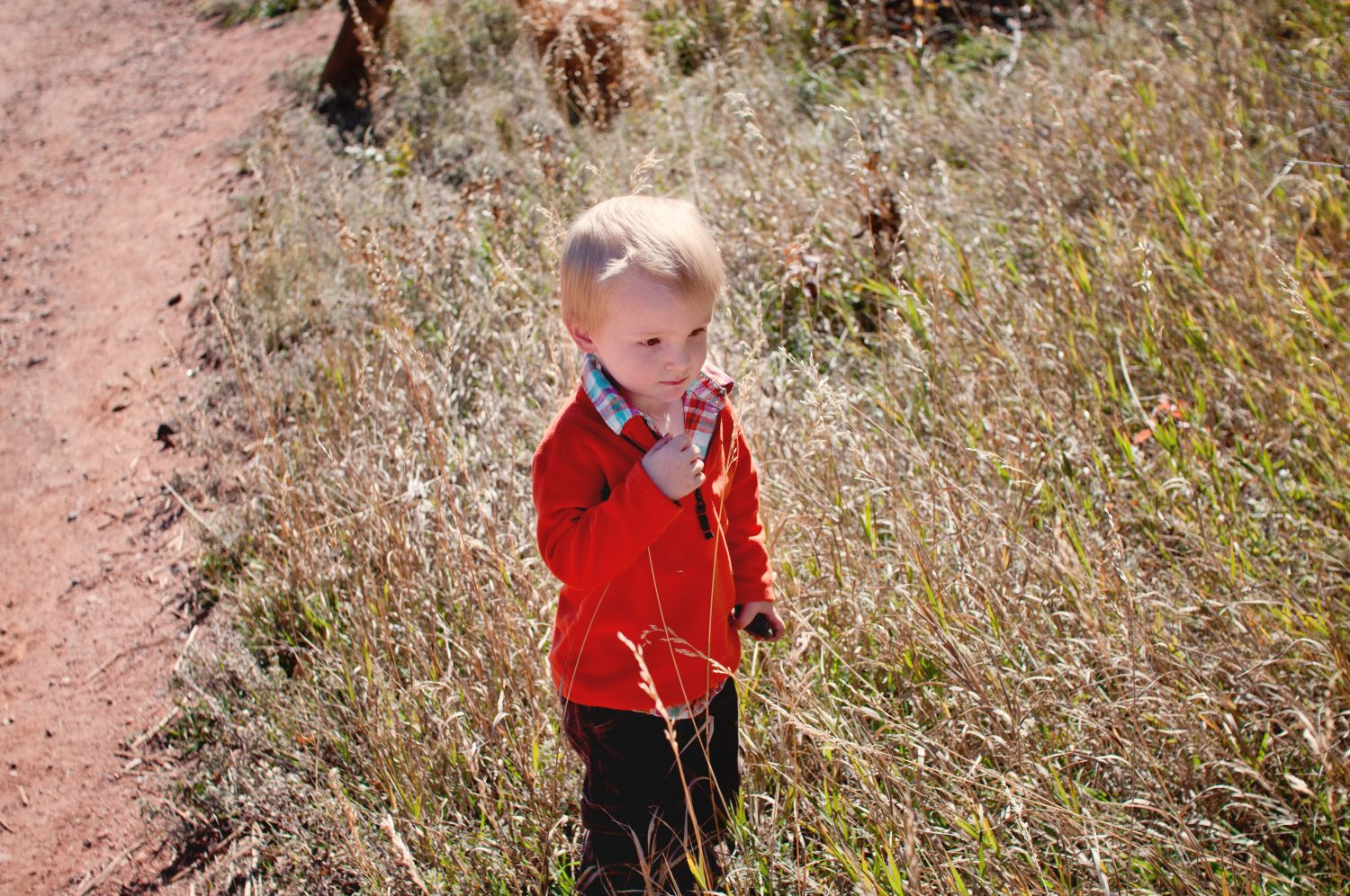 young boy standing in tall grass