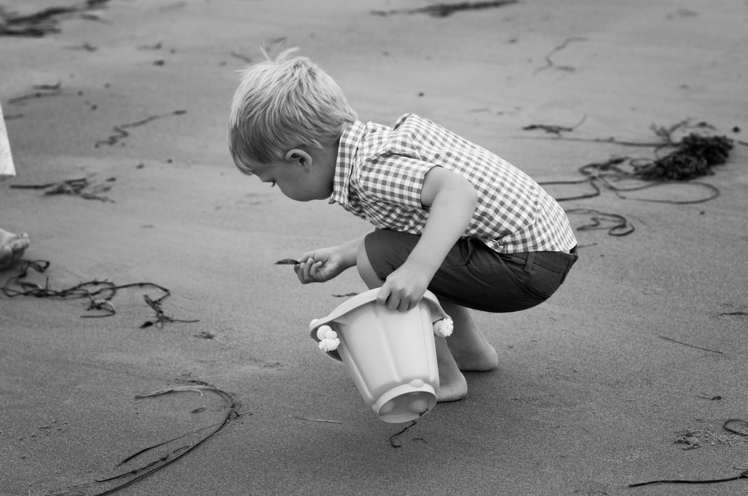 black and white photo of toddler boy playing with shells on the beach