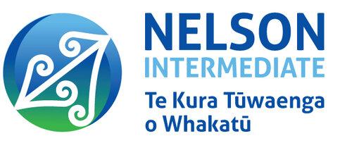 NIS_logo-wide1.jpg