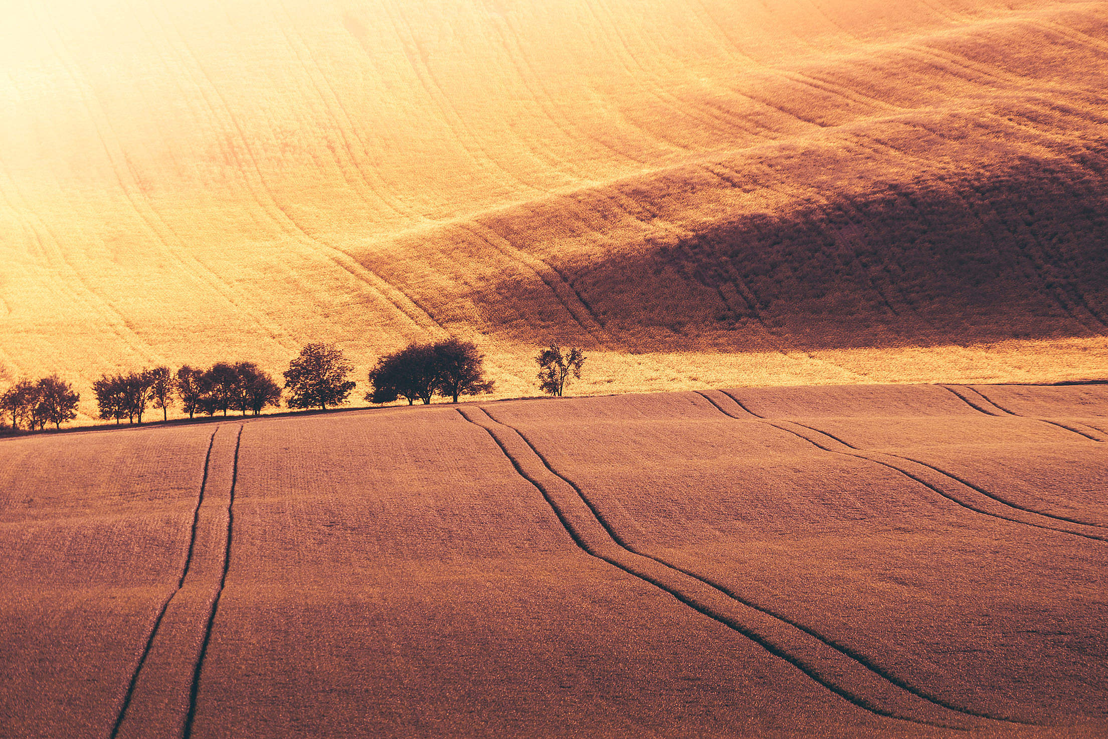 endless-hills-free-photo-2210x1473[1].jpg