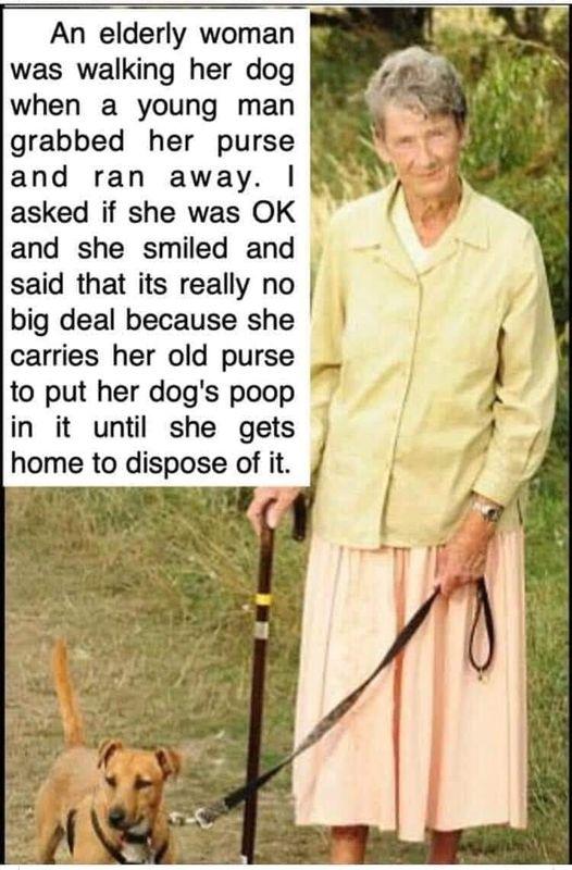 .a dog karma story.png