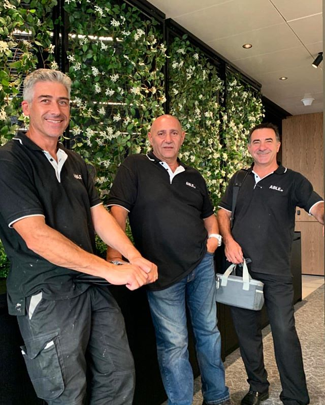 Our trusted Able men - Albert, Paul & Sam. There is no project too big, small or specialised for our team. We're #Able 🛠 — #able #ablemm #maintenance #melbournemaintenance #melbourne #internalrepairs #yes #painting #patch #plumbing #electrical #joinery #tiling #carpentry #hardware #spanner #handyman #instagood #insta #contact #house #trending #igdaily #refurbished #city #citylife #surburban #environment #sustainability #weareable