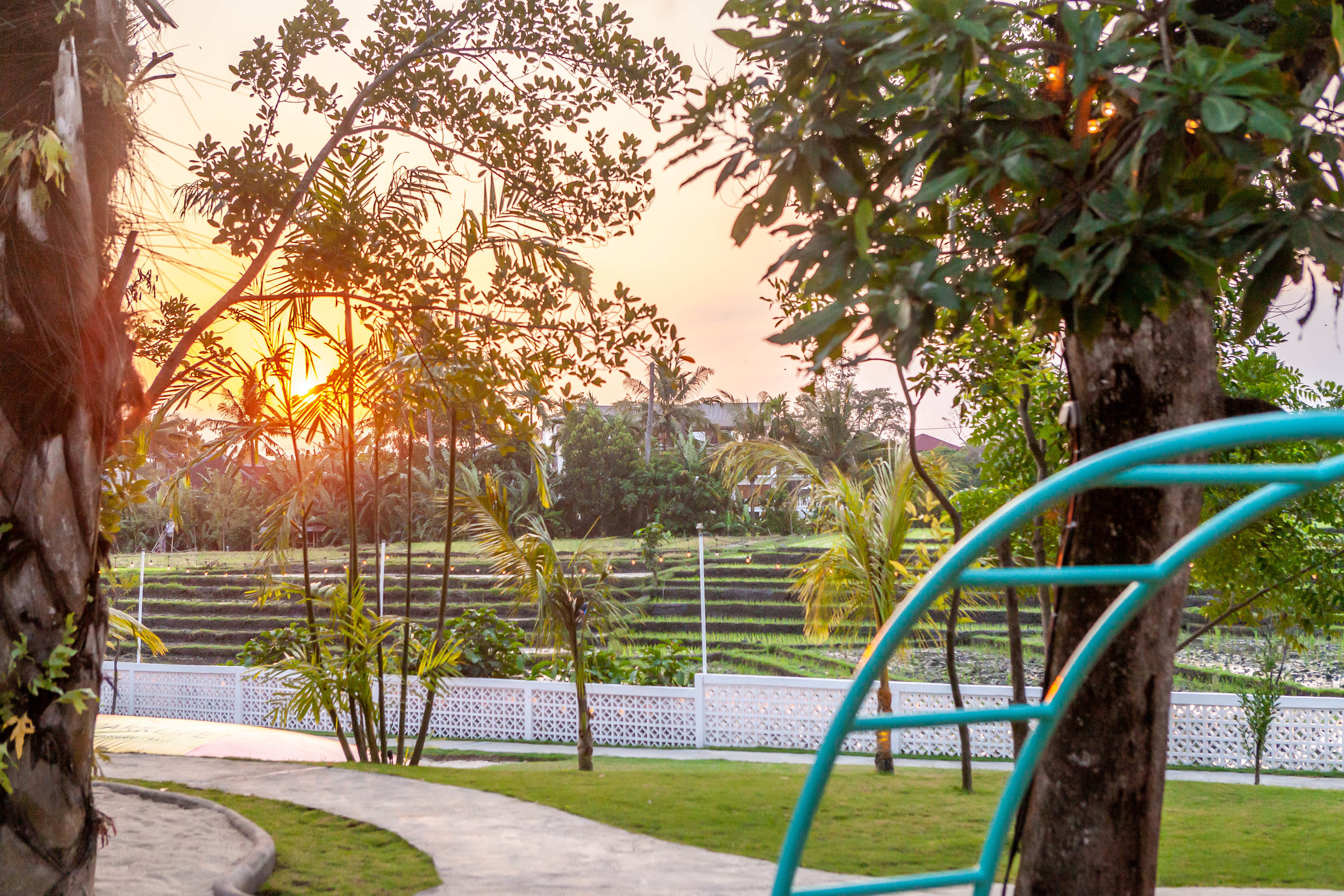 Sunset with Monkey Bars.jpg