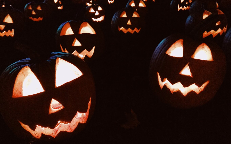 pumpkin in post.jpg