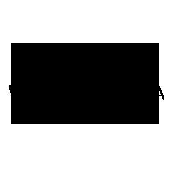 WALLASVAARA_ENGAGE_logo_black.png