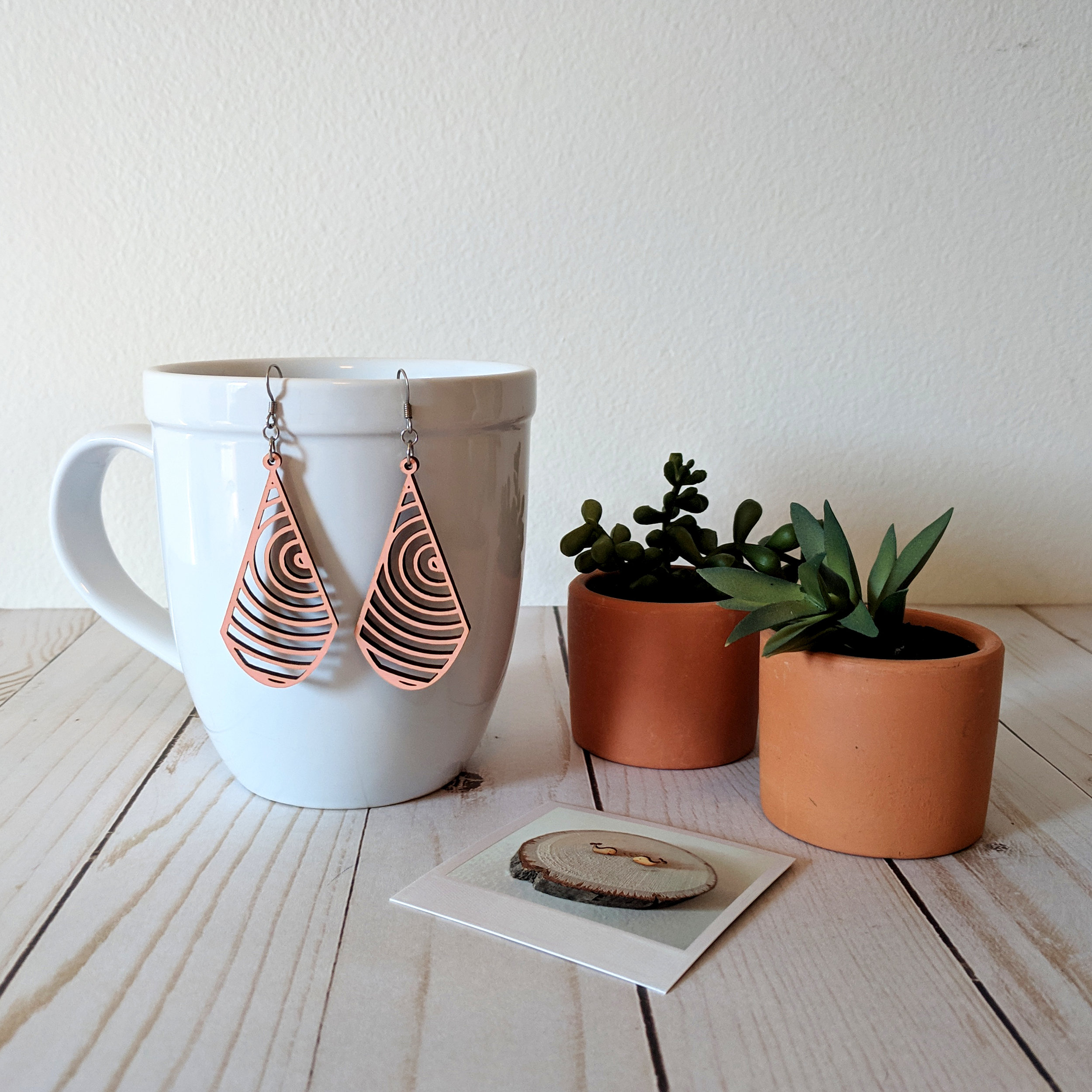 concentric circle earrings cup succulents.jpg
