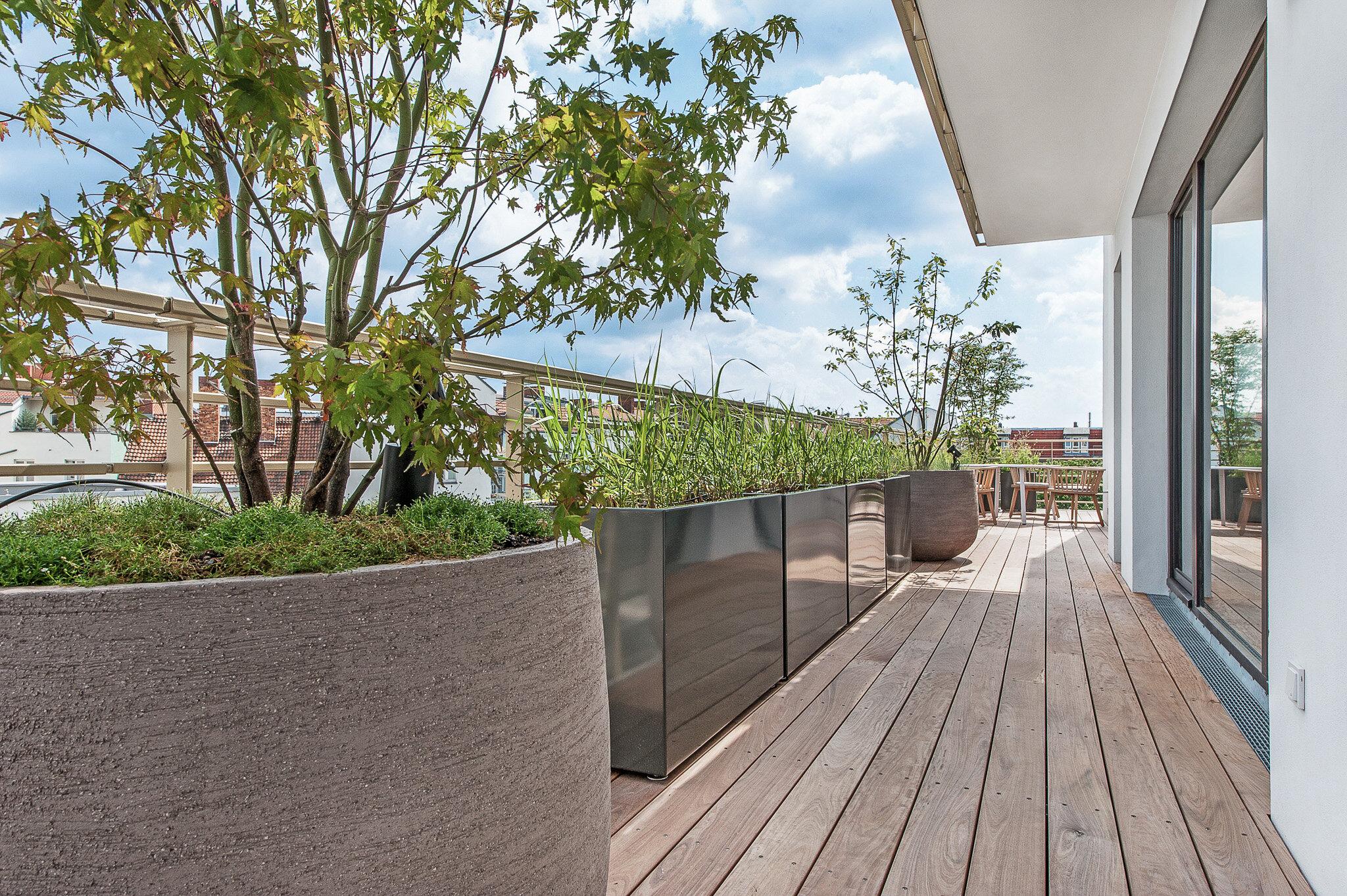 Pflanzen in Kübeln auf dem Balkon eines Luxusapartments in Berlin