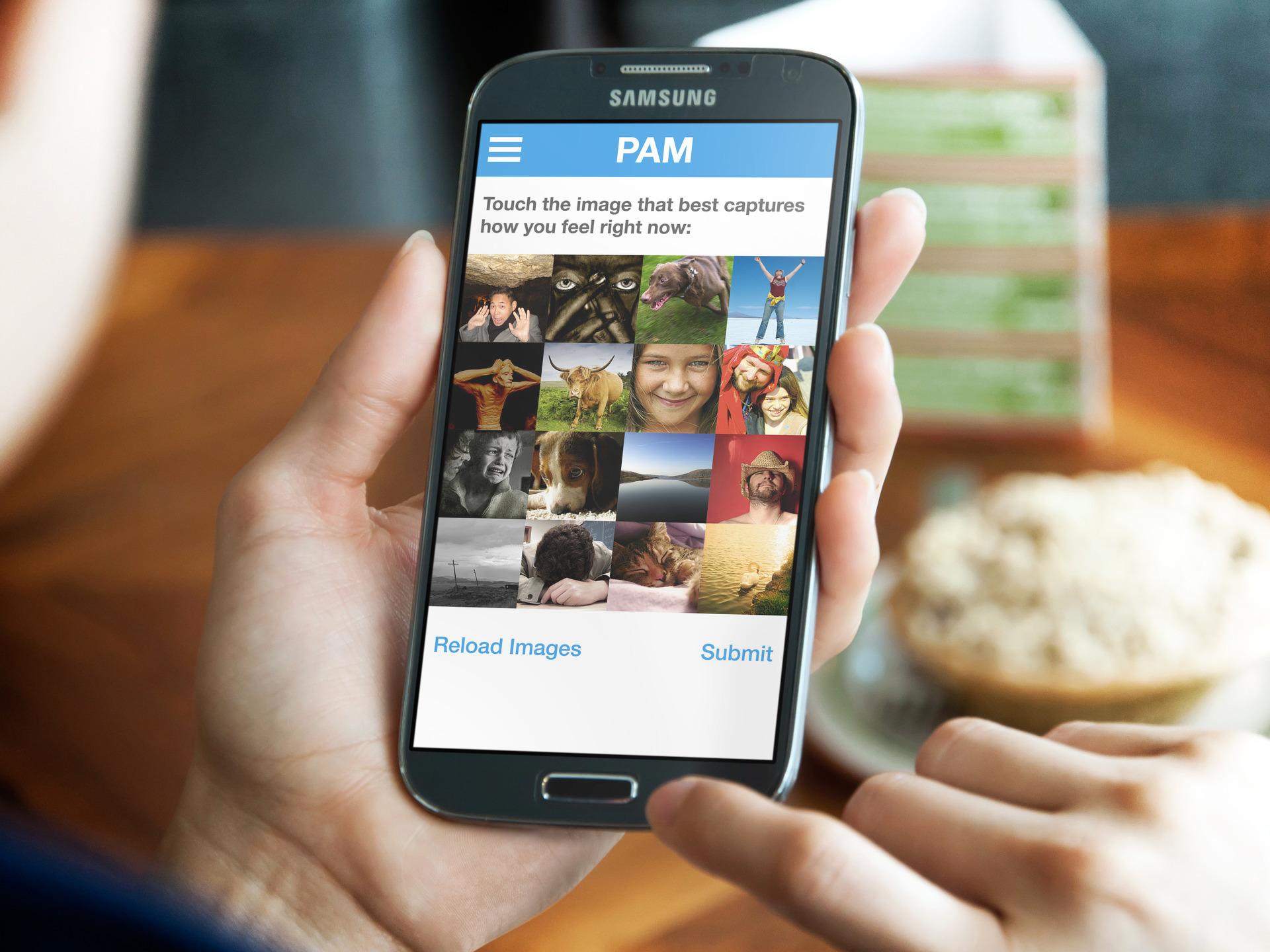 PAM_in_hand.jpg