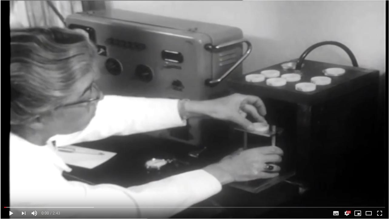 Dr. Ruth Lotmar (Interview im Schweizer Fernsehen, 1964, YouTube)