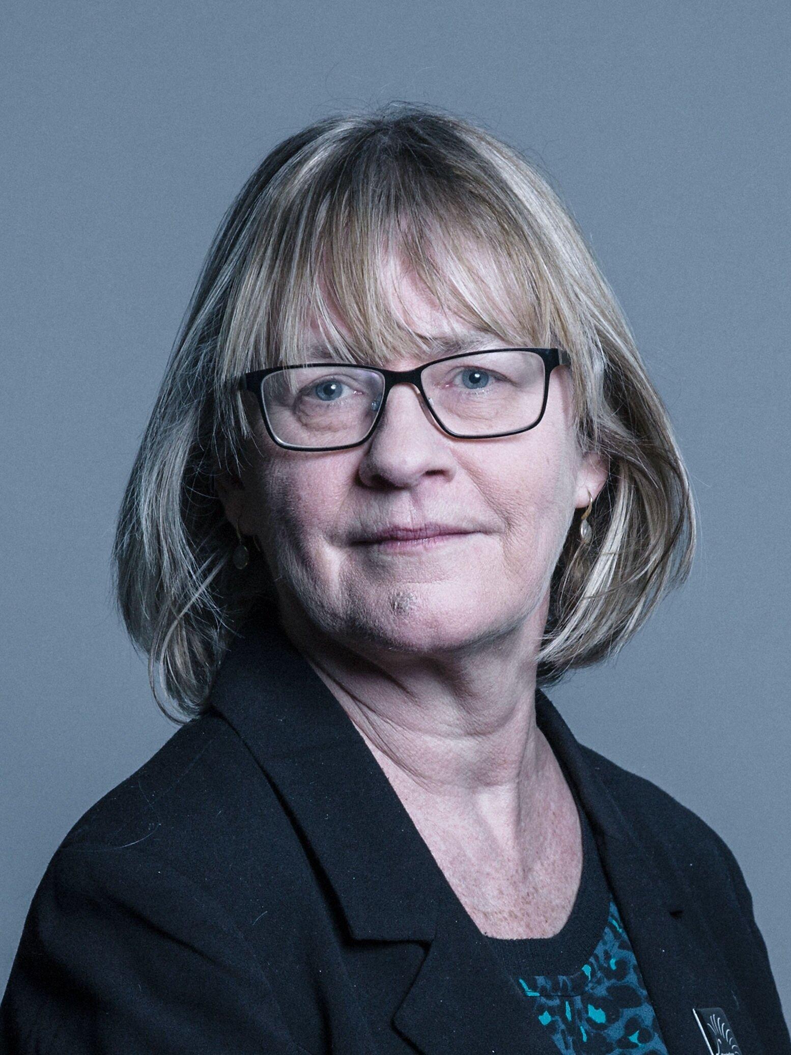 Baroness Bonham-Carter, Vice-Chair