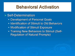 - Behavioral Modification and Behavioral Activation Therapy @ WBH