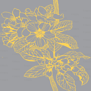 square-YellowFlower.png
