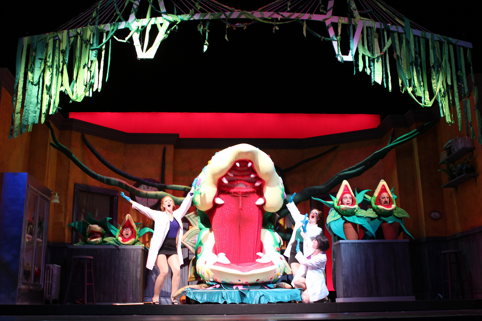 photo by Beth Curley/Julian Wiles   Little Shop of Horrors , 2015  playing Orin, the dentist