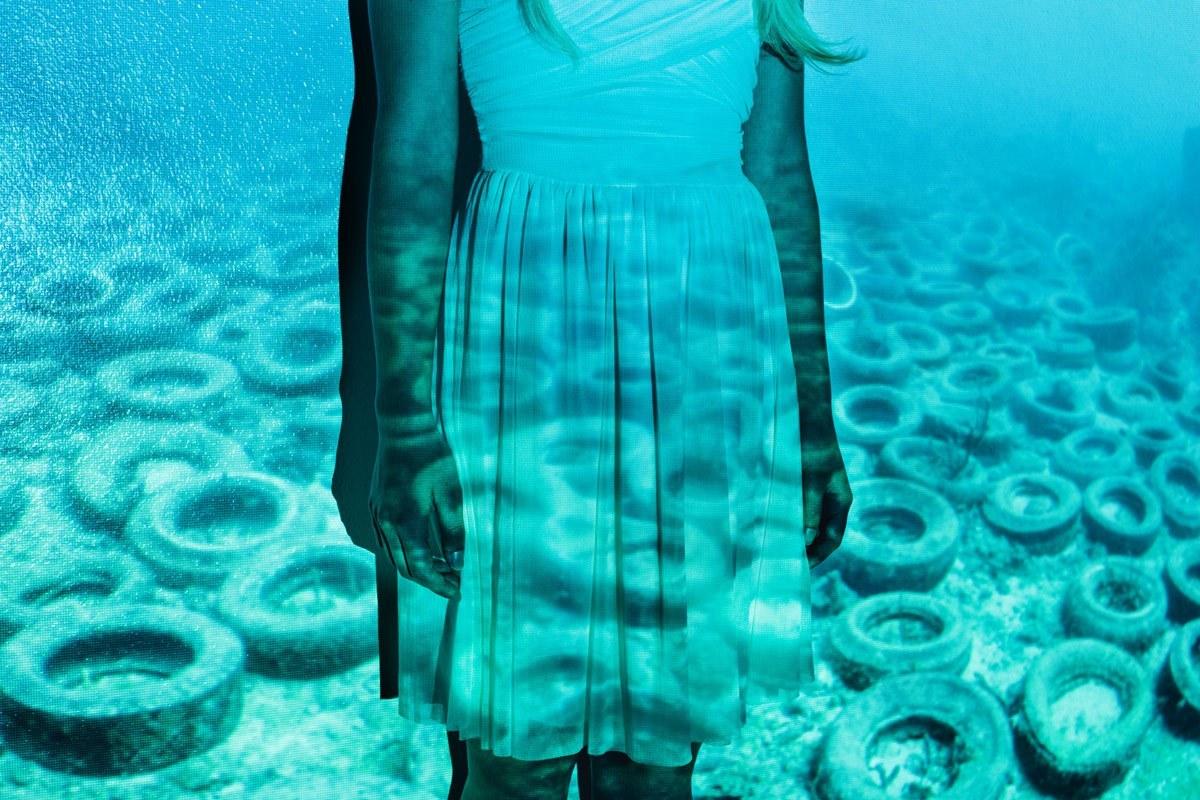 enviroment-pollution-galla-muta-giamp-3.jpg