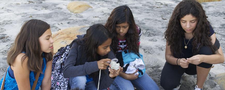 Marine Bio beach.jpg