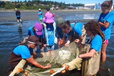 Marine Biology fieldwork.jpg