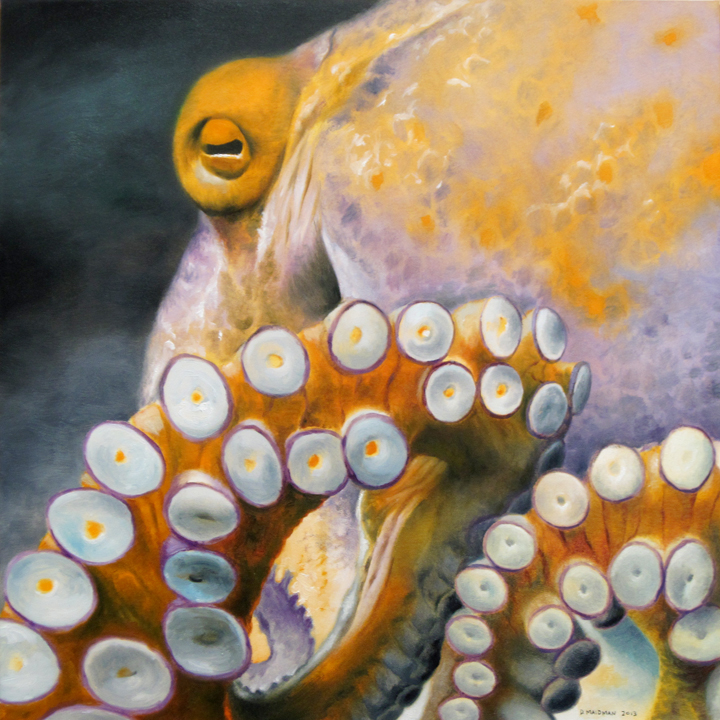 MAIDMAN_An-Octopus_12x12.jpg