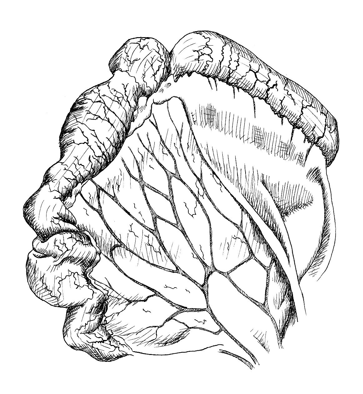 10. intestine 1.jpg