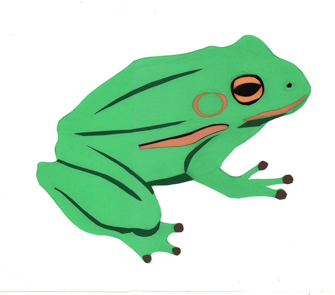 2. frog complete.jpg
