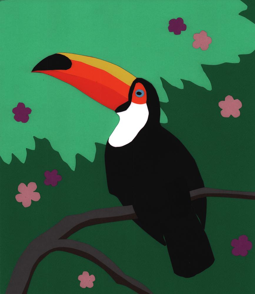 4. Toucan full.jpg