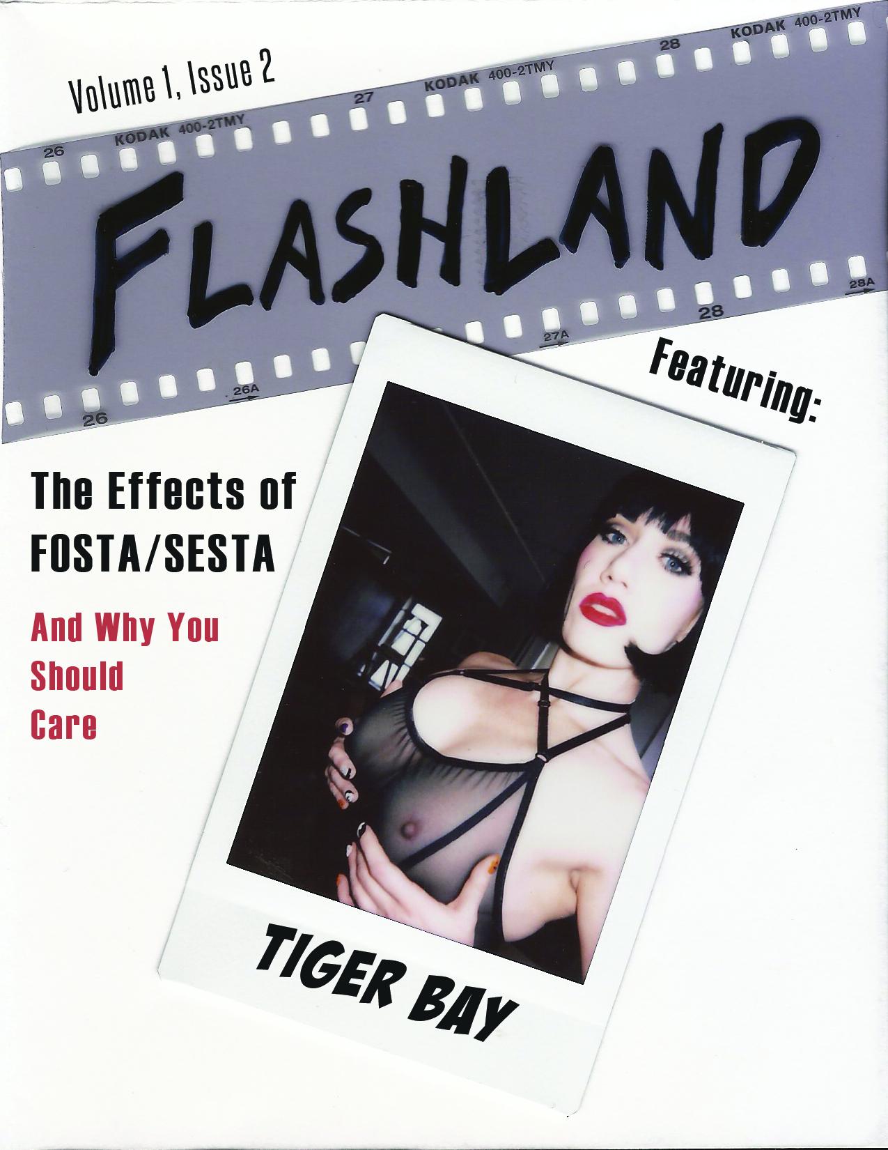 Flashland V1I2 cover.jpg