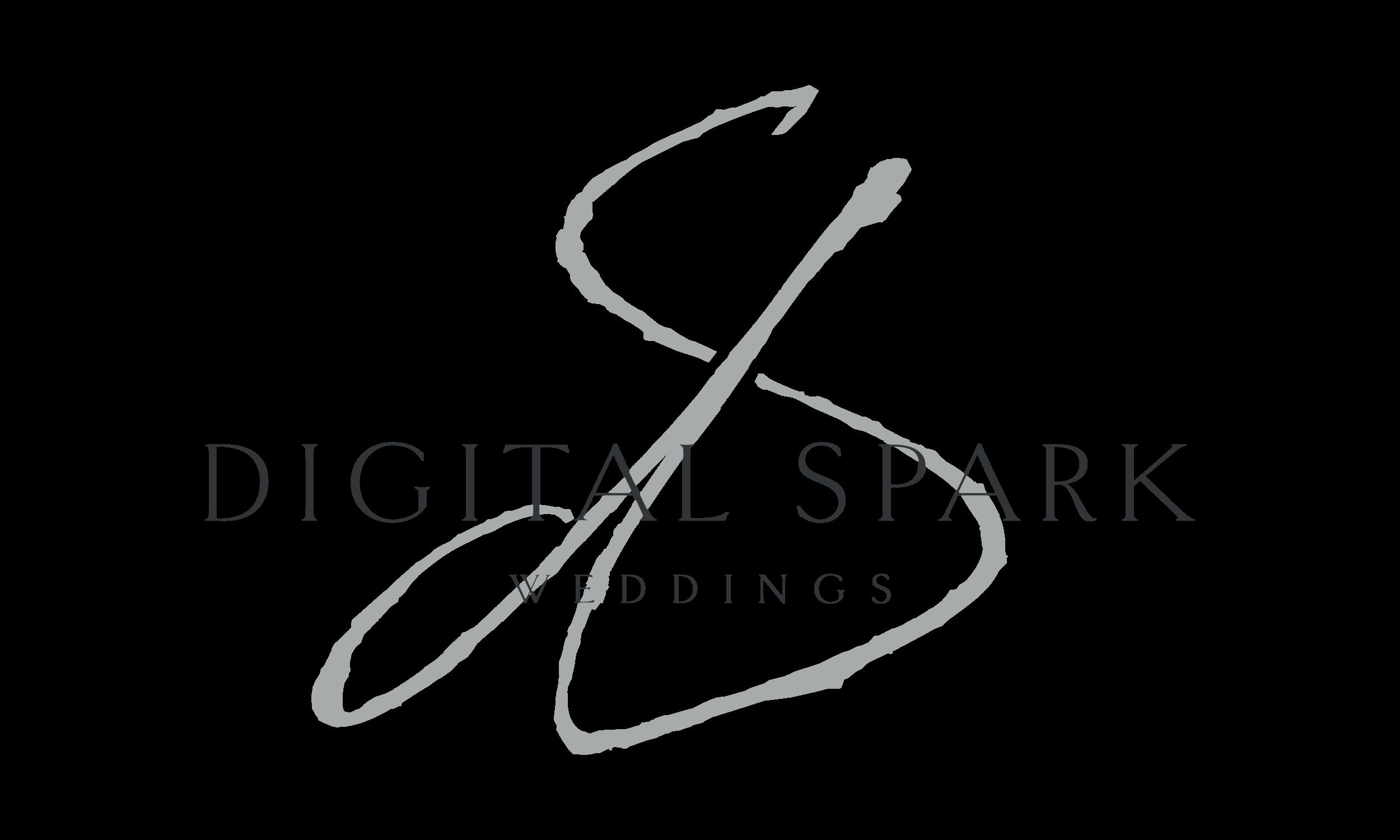DSW-Logo-2019-black-XXL-Reversed@2x.png