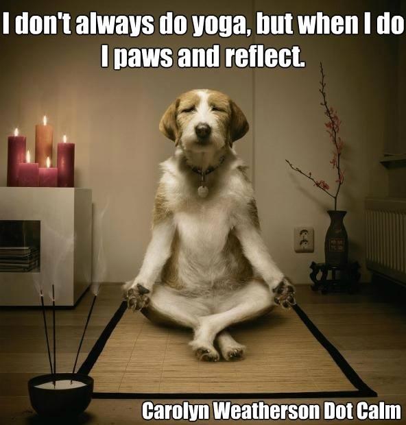 yoga meme blog 28.jpg