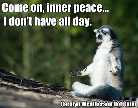 yoga meme blog 17.jpg