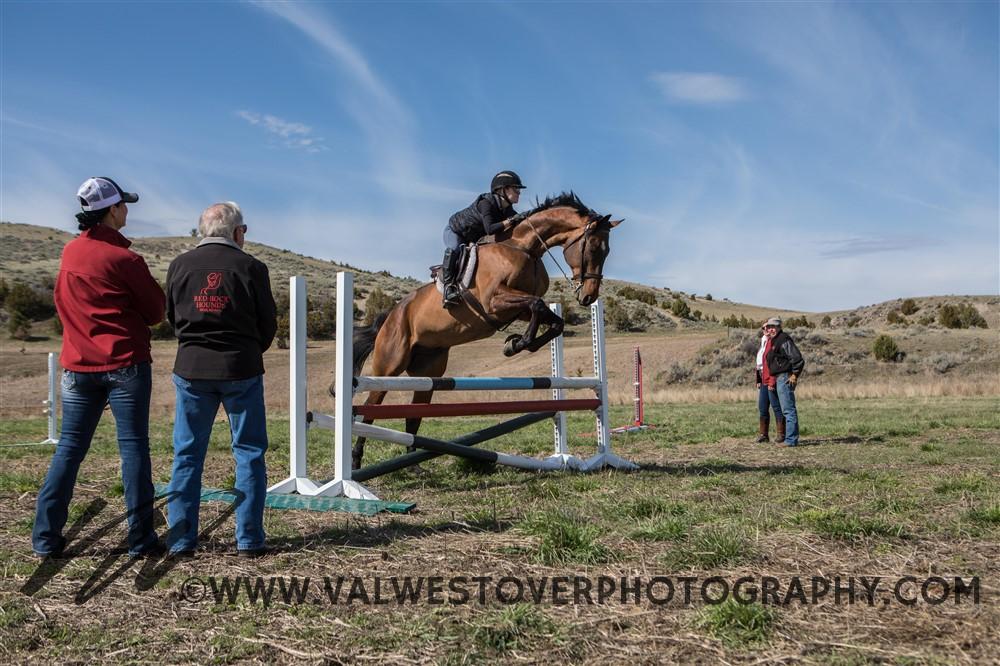 lynn-lloyd-horse-lessons-jumping