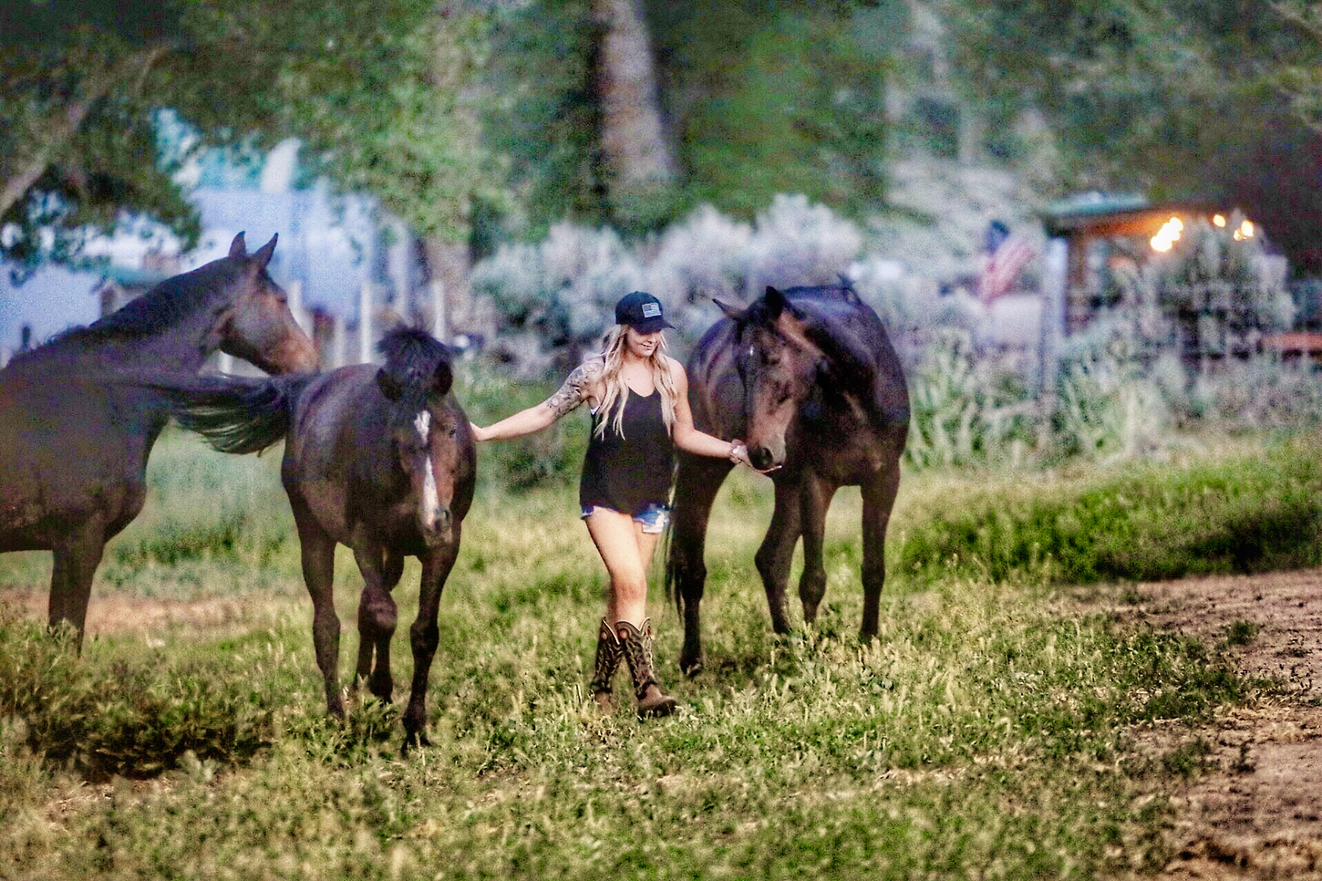 RED-ROCK-HOUNDS-HORSE-BOARDING
