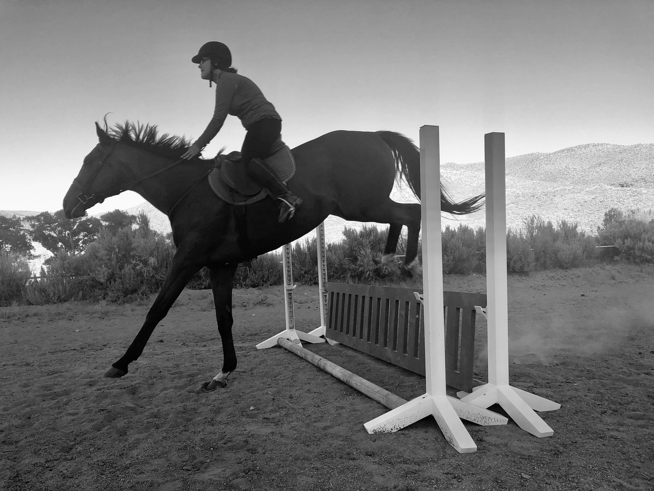 Red Rock Hounds Horse Training