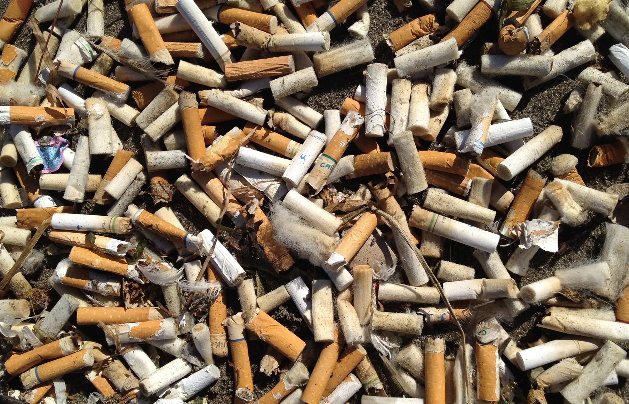 180824-oregon-cigarette-cleanup-al-1646_c1ffc2ed87fd0f3222c4f11621d4da7b.fit-2000w.jpg